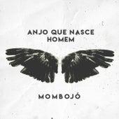 Anjo Que Nasce Homem de Mombojó