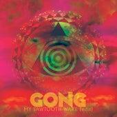 My Sawtooth Wake (Radio Edit) by Gong