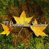 77 Bound in Sound von Music For Meditation