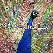 80 Reading Life by Classical Study Music (1)