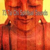 73 Tai Chi Spiritual Sounds de Study Concentration