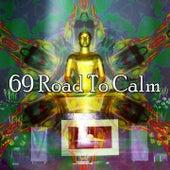69 Road to Calm von Massage Therapy Music