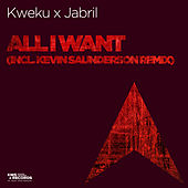 All I Want by Kweku Saunderson