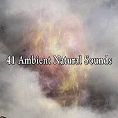 41 Ambient Natural Sounds von Lullabies for Deep Meditation