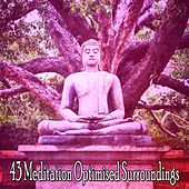 43 Meditation Optimised Surroundings von Entspannungsmusik