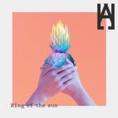 King of The Sun by Hallman