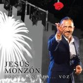 Desnudándola.....voz by Jesús Monzón