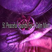 51 Peaceful Sounds for a Calm Mind von Massage Therapy Music