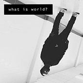 What Is World? de Eric Vøn
