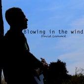 Blowing in the Wind by David Leonard