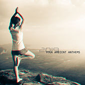 2019 Yoga Ambient Anthems de Reiki