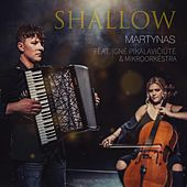Shallow  [Symphonic Rendition] von Martynas