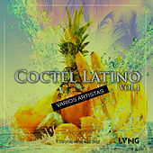 Coctel Latino, Vol. 1 de Various Artists