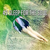 43 Sleep for the Soul von Best Relaxing SPA Music