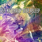 59 Naturally Deep Asleep de White Noise Babies