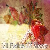 71 Fields of Sleep de Smart Baby Lullaby
