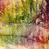 68 Feel the Calming Aura de Sounds Of Nature