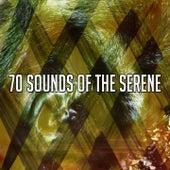 70 Sounds of the Serene de Deep Sleep Relaxation