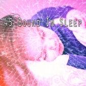 45 Bound in Sleep de Sleepicious