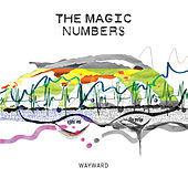 Wayward by The Magic Numbers