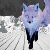The Fox de Cluster