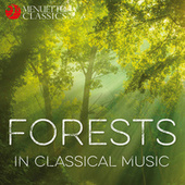 Forests in Classical Music von Various Artists
