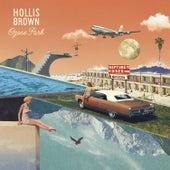 Bad Mistakes by Hollis Brown