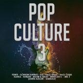 Pop Culture, Vol. 3 de Various Artists
