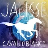 Cavallo bianco di Jalisse