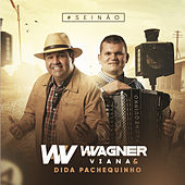 #Seinão von Wagner Viana e Dida Pachequinho