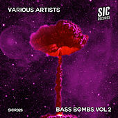 Bass Bombs, Vol. 2 by Various Artists