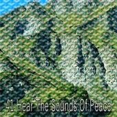 41 Hear the Sounds Of Peace by Deep Sleep Music Academy