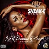 I Wanna Know von Sneak E the Sneakster