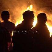 Fragile von Marin Blue