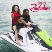 Zimbabwe di Impxct