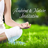 Ambient & Nature Meditation: 2019 New Age Yoga & Relaxation Music with Deep & Nature Sounds, Healing Songs, Inner Bliss de Reiki
