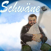 Schwäne by Chillyman