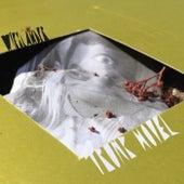 Trunk Novel by Måns Wieslander