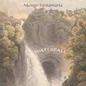 Waterfall by Mongo Santamaria