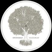 Silizium EP (Remastered 2019) de Apparat