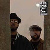 True & Livin von Blu & Exile