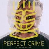 Perfect Crime de Nause