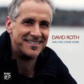 Will You Come Home von David Roth