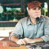 Sea of Dreams de Steve Strauss