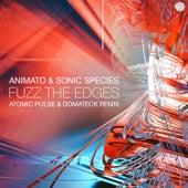 Fuzz the Edges (Atomic Pulse & Domateck Remix) by Animato