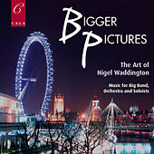 Bigger Pictures: The Art of Nigel Waddington by Various Artists