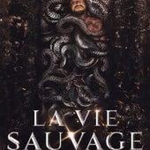La vie sauvage by Profit Za3im