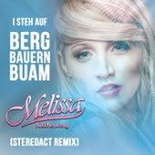 I steh auf Bergbauernbuam (Stereoact Remix) von Melissa Naschenweng
