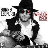 Waylon Back by Sunny Ledfurd