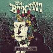 The Young Hegel de Sr. Bikini